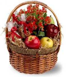 fruit&plant
