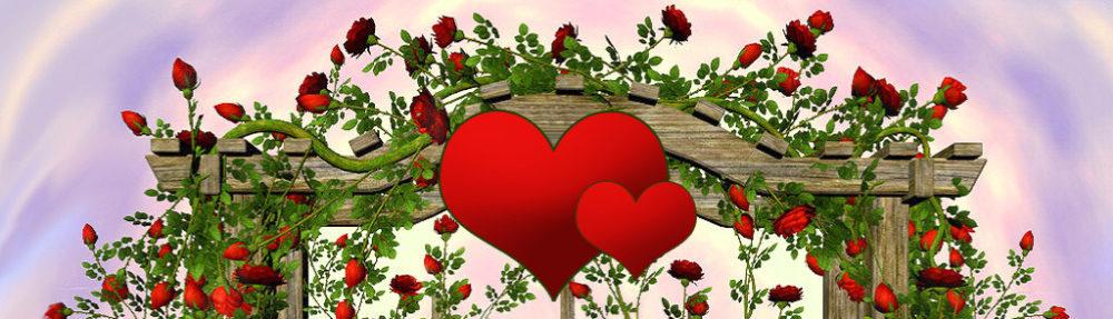 Blossom Time Flowers